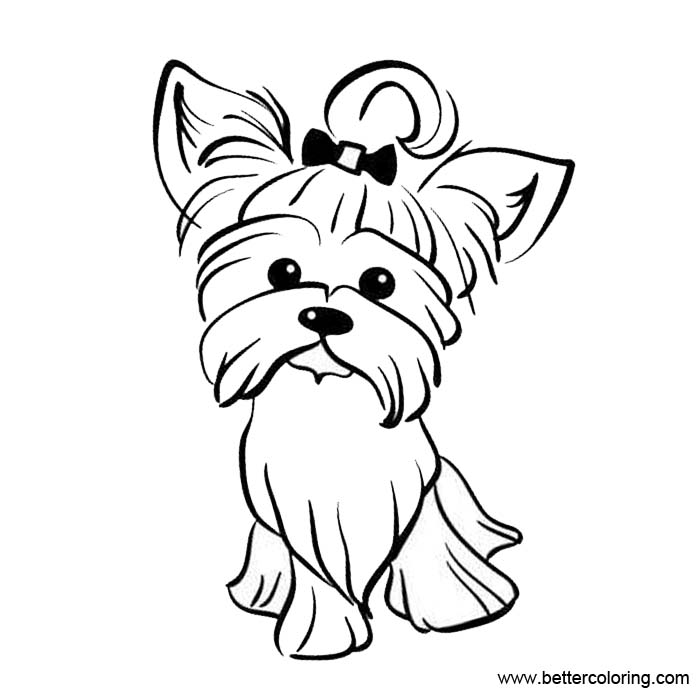 yorkie puppy coloring pages yorkie puppy coloring pages free printable coloring pages puppy pages yorkie coloring