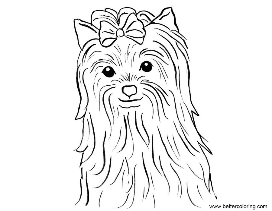 yorkie puppy coloring pages yorkie puppy drawing at getdrawings free download puppy coloring pages yorkie
