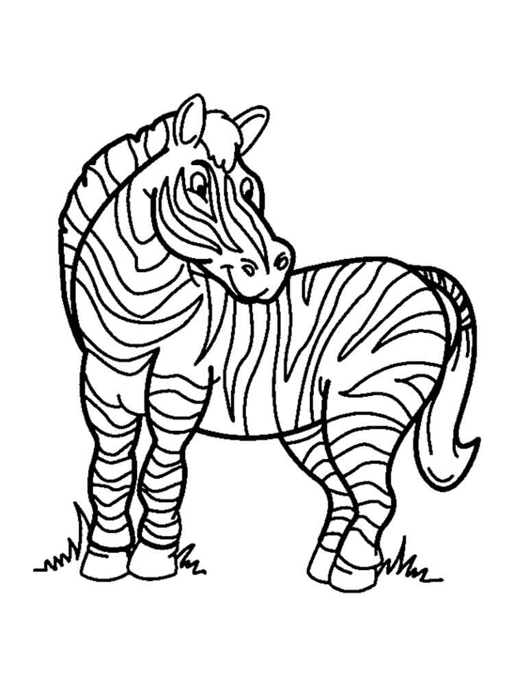 zebra colouring pages to print zebra coloring pages free printable kids coloring pages to zebra colouring print pages