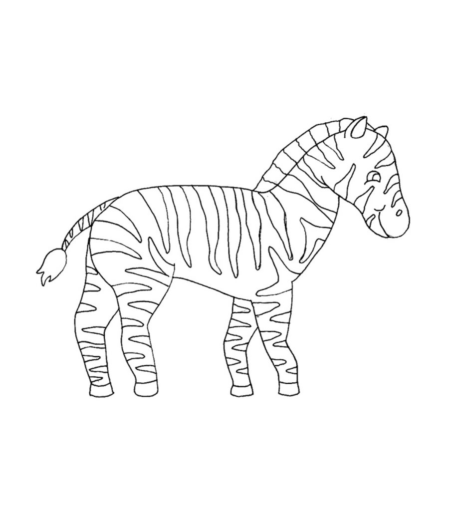 zebra colouring pages to print zebra coloring pages to download and print for free print colouring to pages zebra