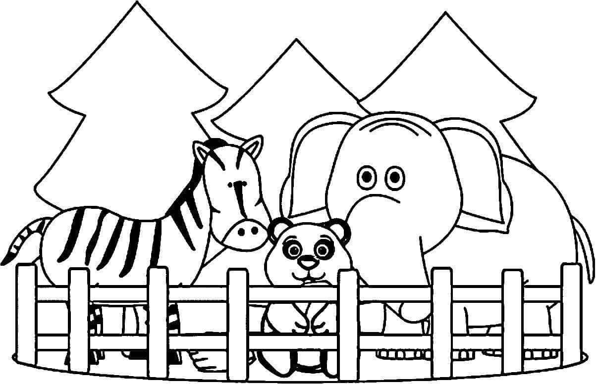 zoo coloring picture the colorful zoo cait39s japanese elementary english picture coloring zoo