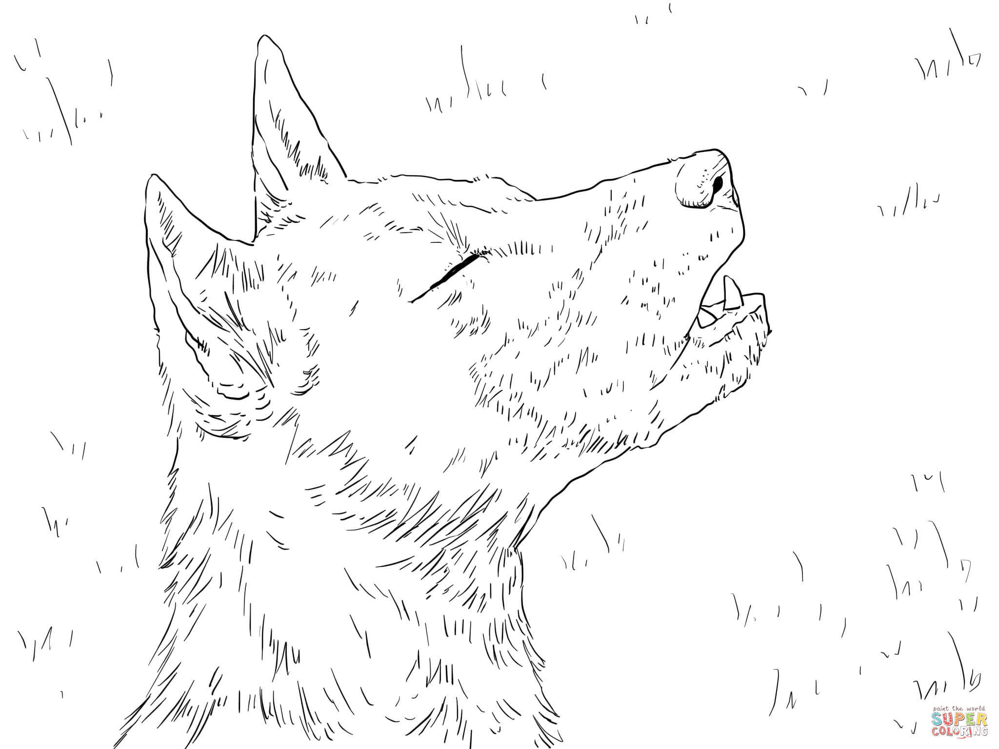african wild dog coloring pages african wild dog coloring page at getcoloringscom free dog wild pages coloring african