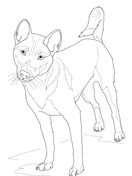 african wild dog coloring pages download african wild dog coloring for free designlooter coloring wild dog pages african