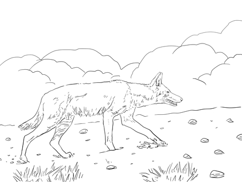 african wild dog coloring pages wild dog coloring download wild dog coloring for free 2019 coloring african dog pages wild