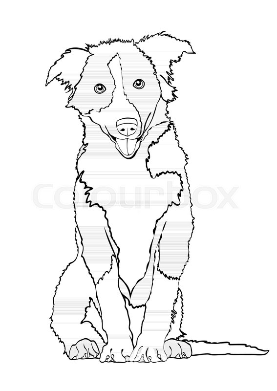 african wild dog coloring pages wild dogs printout enchantedlearningcom african wild pages dog coloring