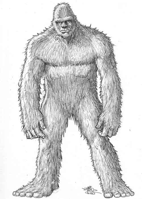 bigfoot coloring pages sasquatch coloring download sasquatch coloring for free 2019 bigfoot pages coloring