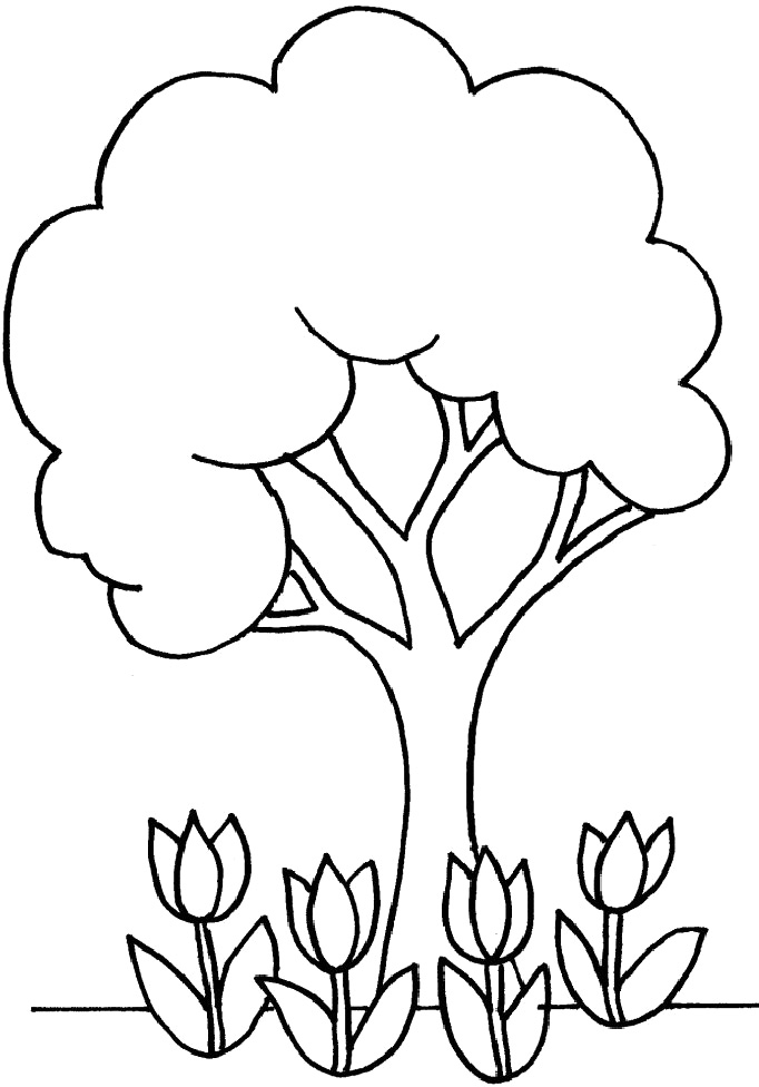coloring page of a tree elm tree coloring pages at getcoloringscom free a of coloring tree page