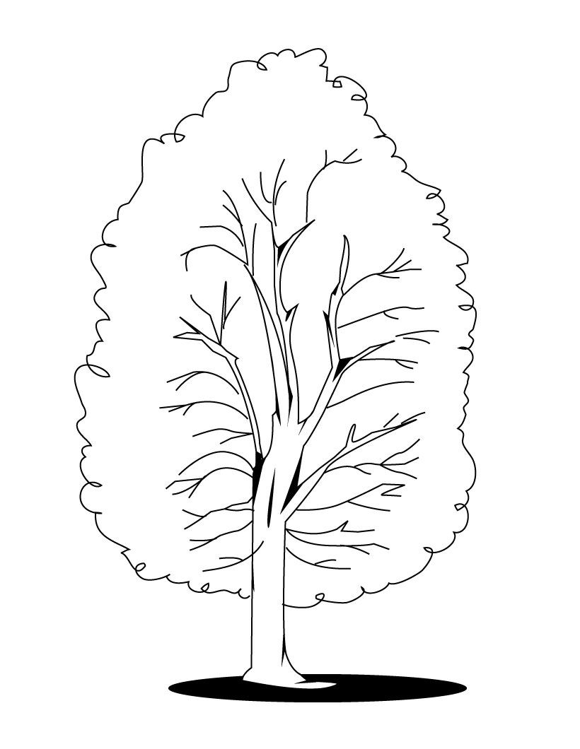 coloring page of a tree farm coloring pages momjunction tree coloring of a page