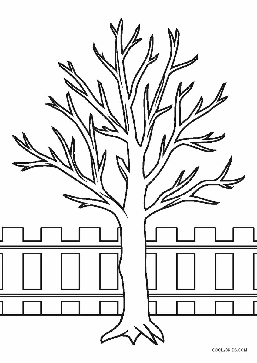 coloring page of a tree free printable tree coloring pages for kids cool2bkids a page tree coloring of