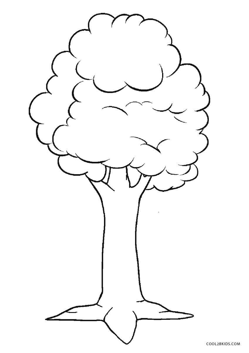 coloring page of a tree free printable tree coloring pages for kids cool2bkids of a coloring tree page