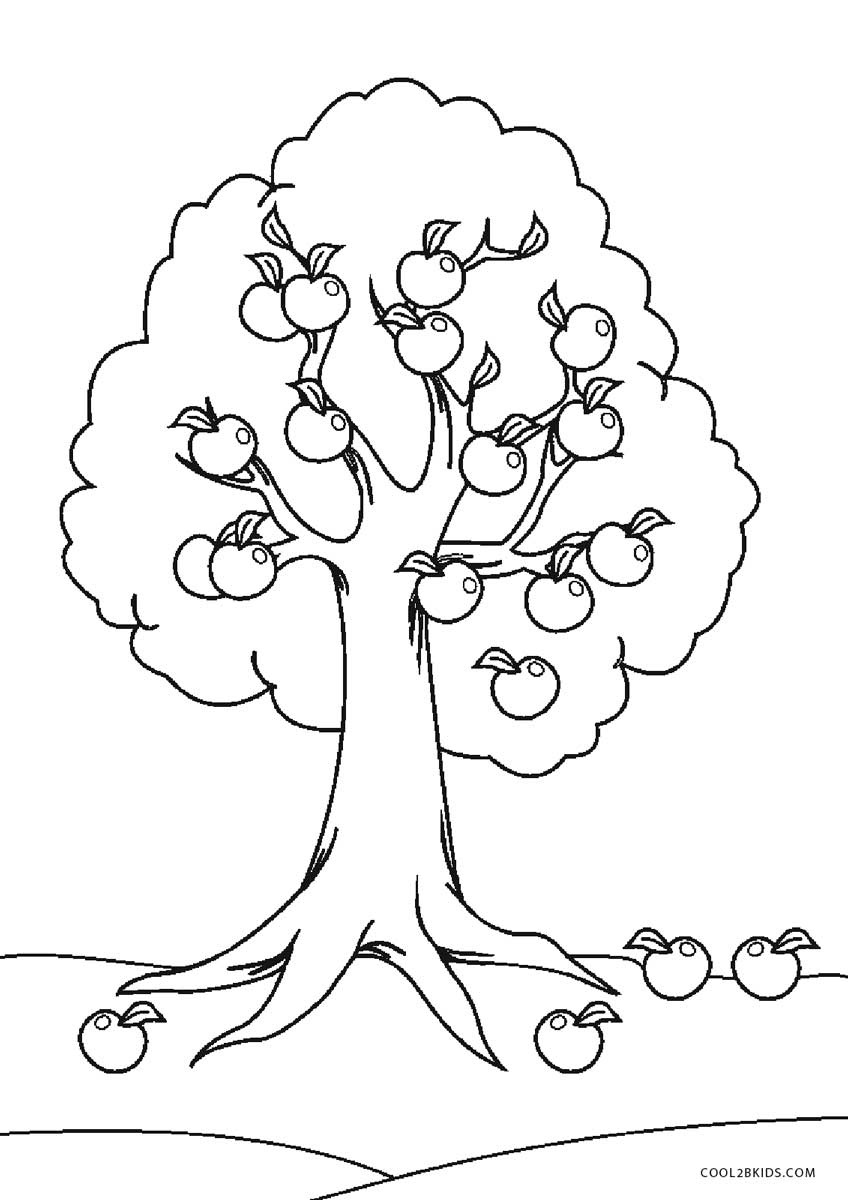 coloring page of a tree free printable tree coloring pages for kids tree coloring of page a
