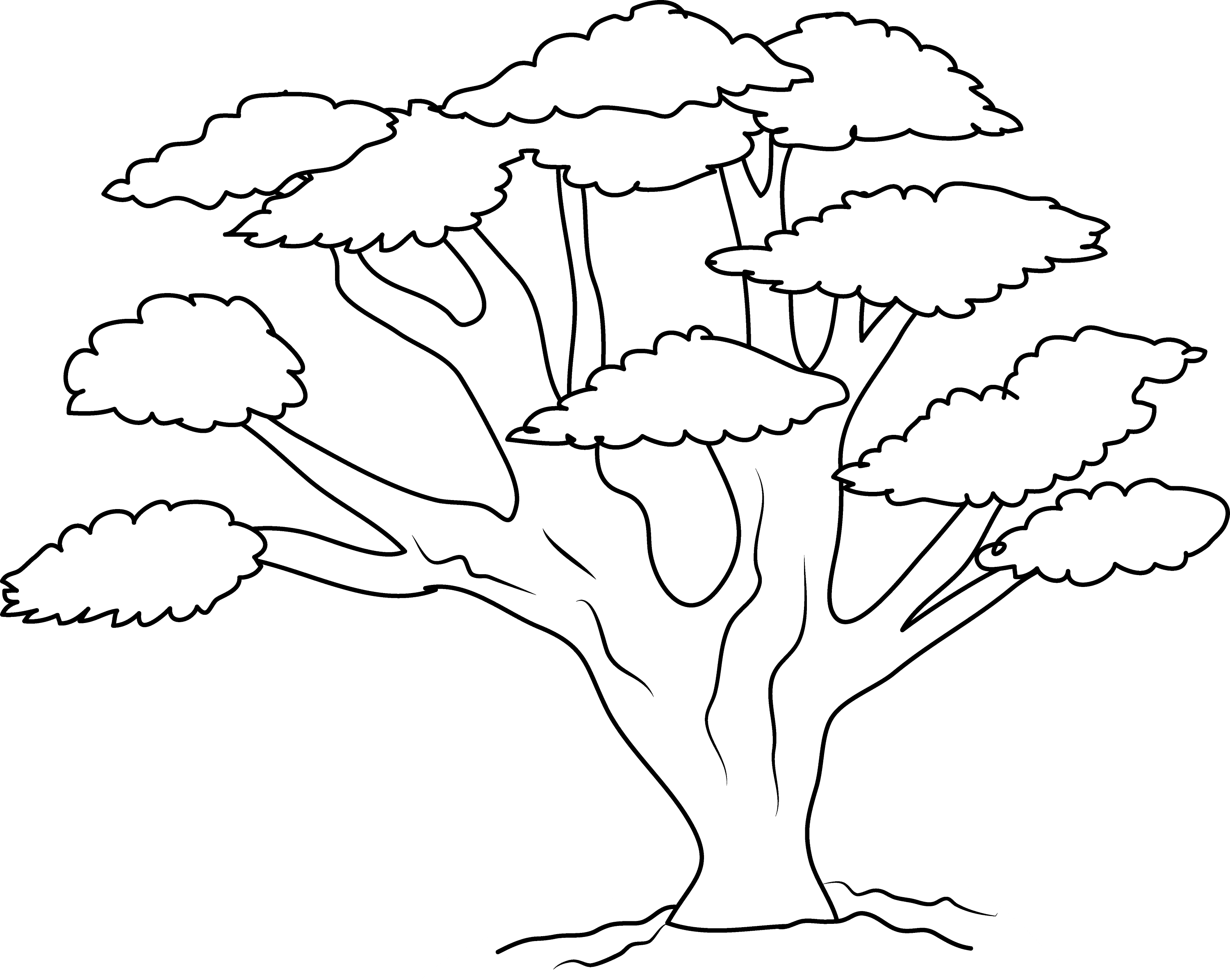 coloring page of a tree tim van de vall comics printables for kids a of tree page coloring