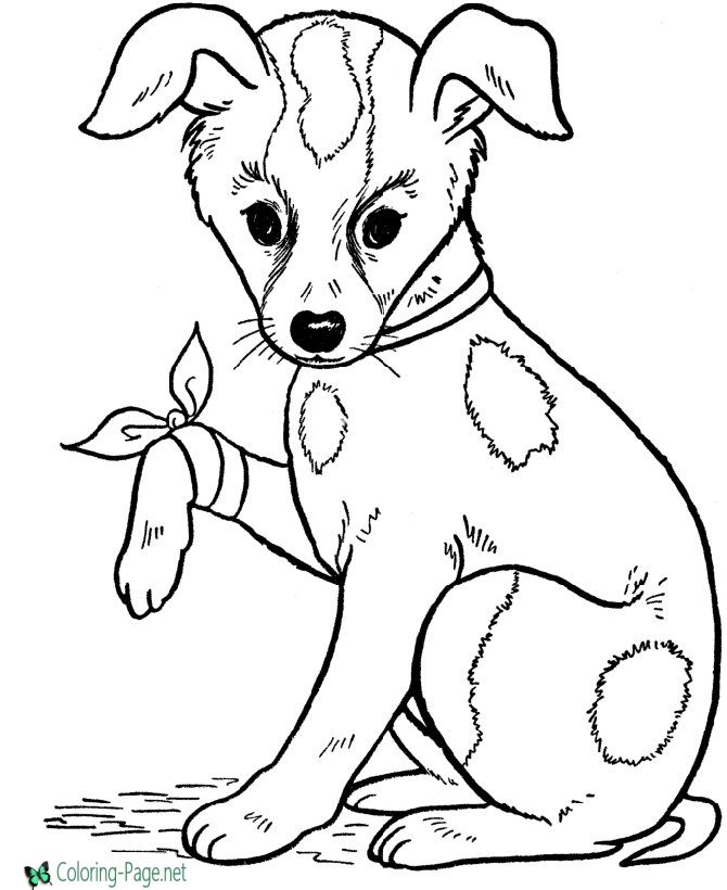 colour in pictures of dogs dog coloring pages printable coloring pages of dogs for of in colour pictures dogs