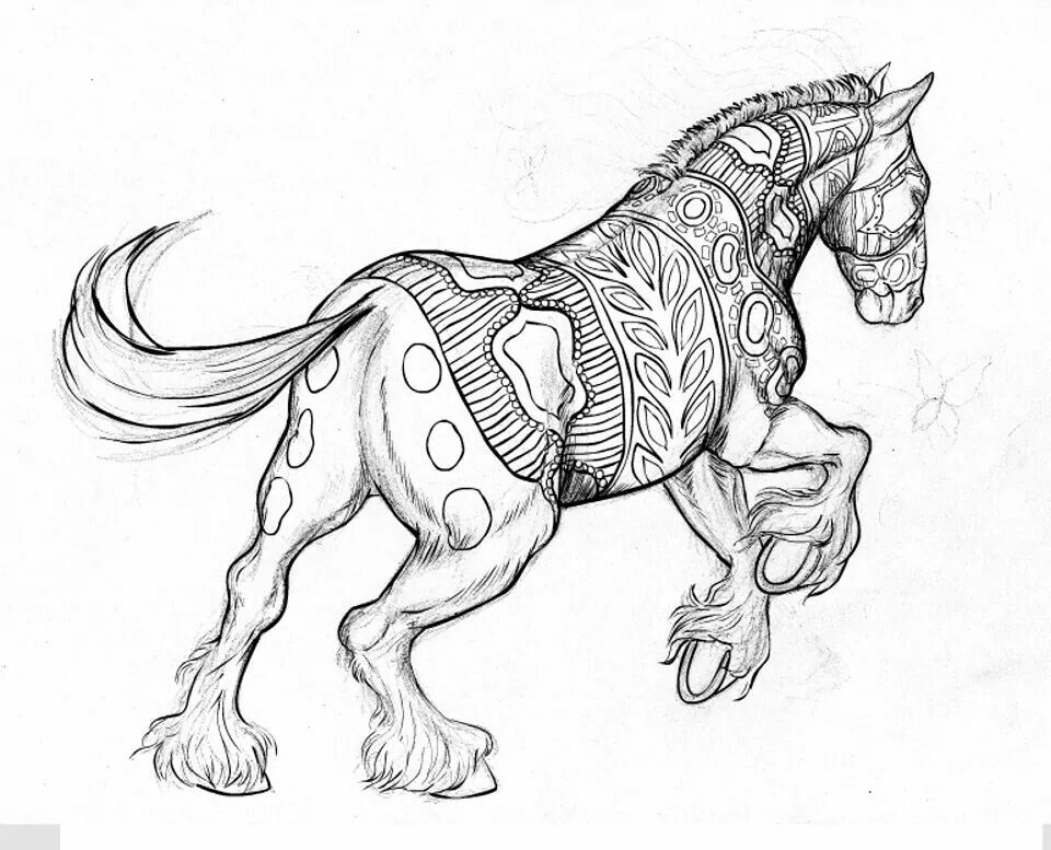 cool horse coloring pages cool horse coloring pages printable horse coloring pages coloring pages cool horse
