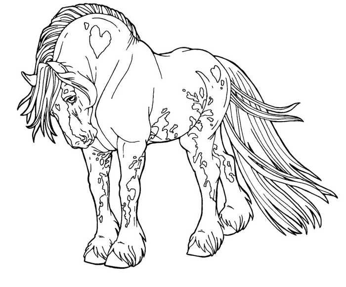 cool horse coloring pages flowers on horses drawing horse sketch cool horse art coloring pages cool horse