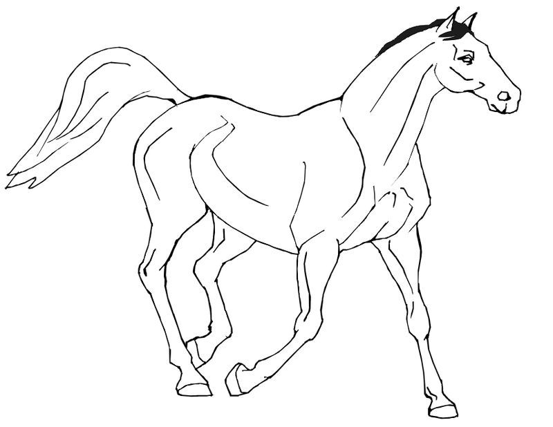 cool horse coloring pages free printable horse coloring pages for kids cool coloring horse pages