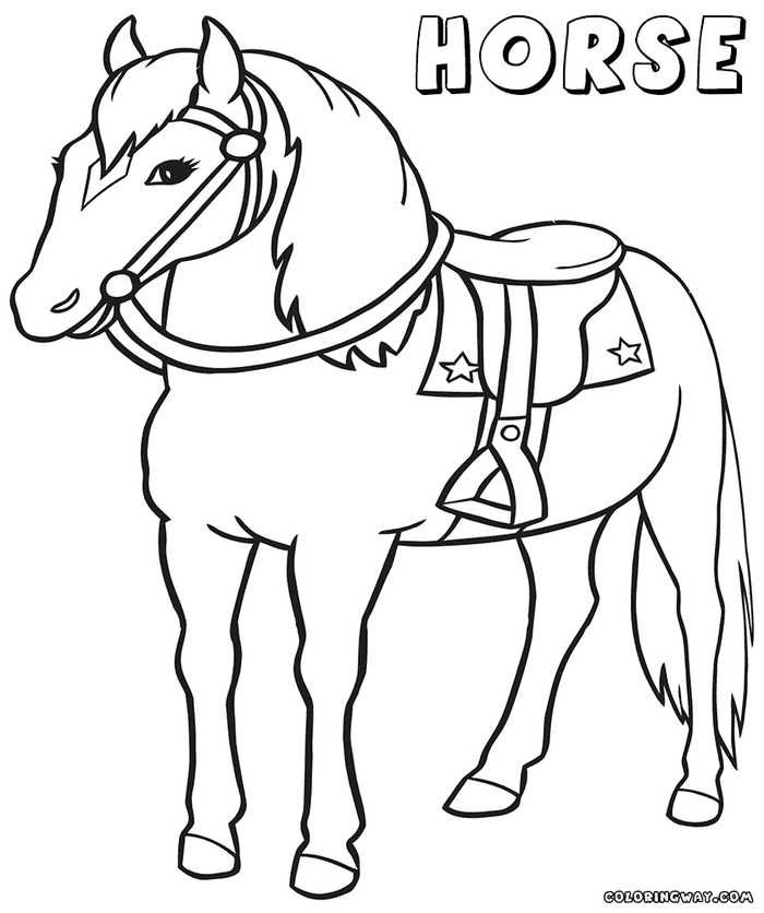 cool horse coloring pages hourses coloring pages  stackbookmarksinfo pages coloring cool horse