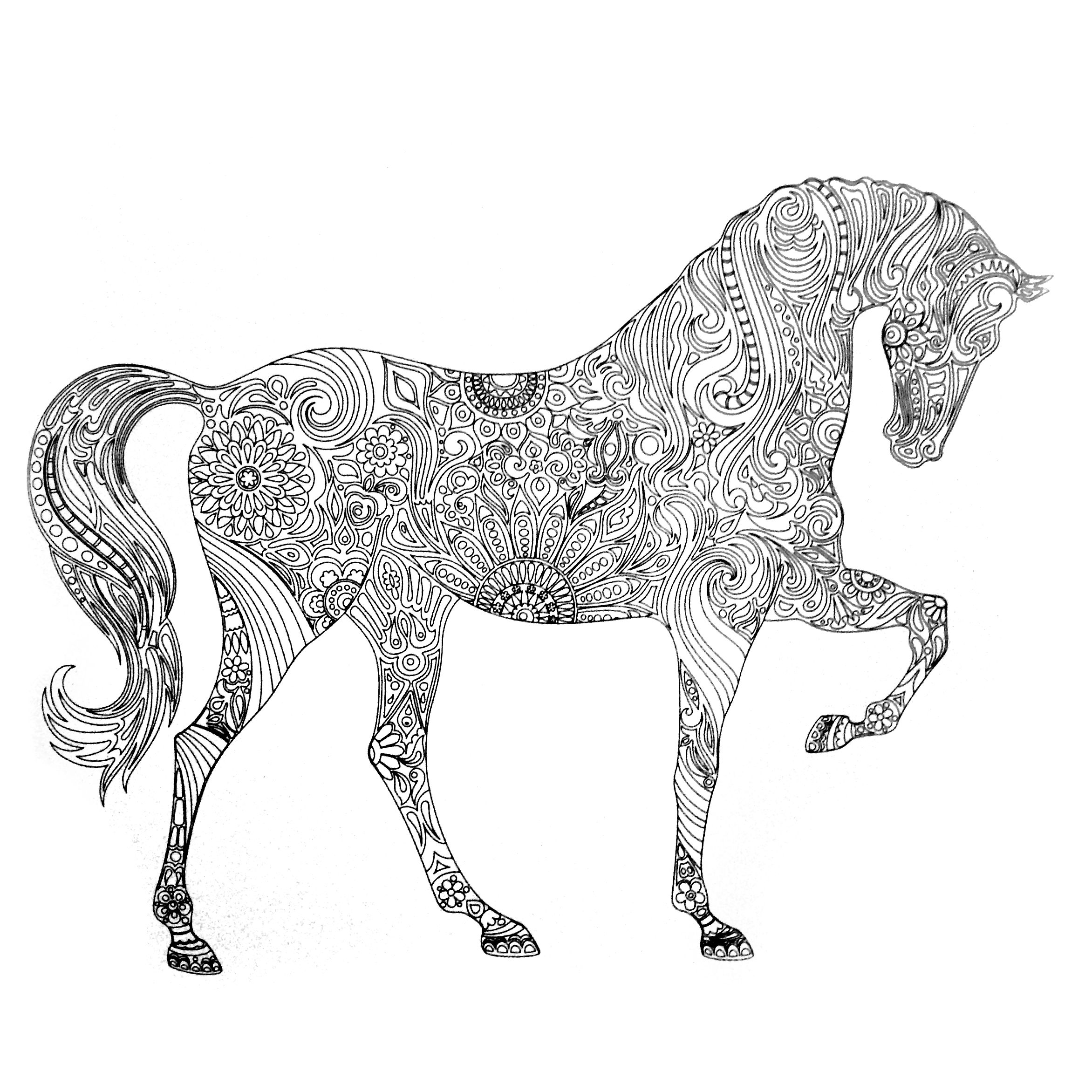 cool horse coloring pages wwwhmcoloringpagescom wp content uploads awesome horse horse coloring cool pages