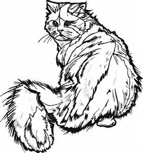 hard cute cat coloring pages 1002 best coloring pages images on pinterest coloring cute cat pages hard