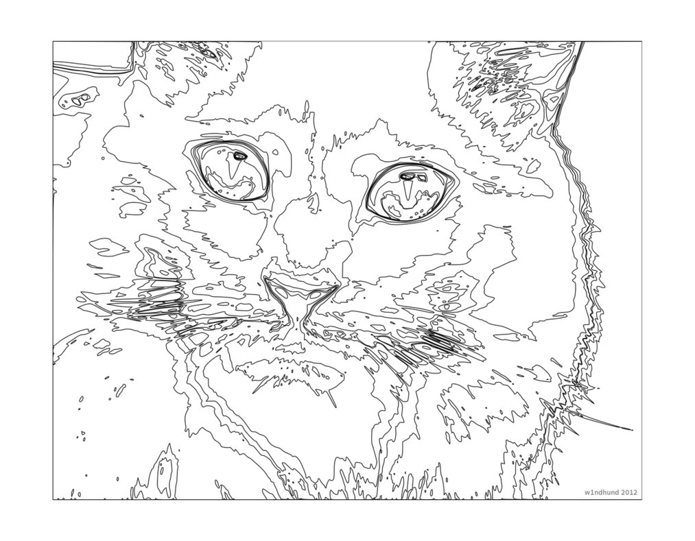 hard cute cat coloring pages cat coloring pages coloringrocks coloring pages cute hard cat