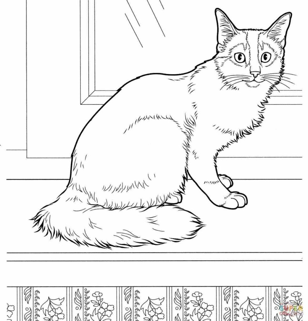 hard cute cat coloring pages kitten coloring pages cat coloring pages hard cute