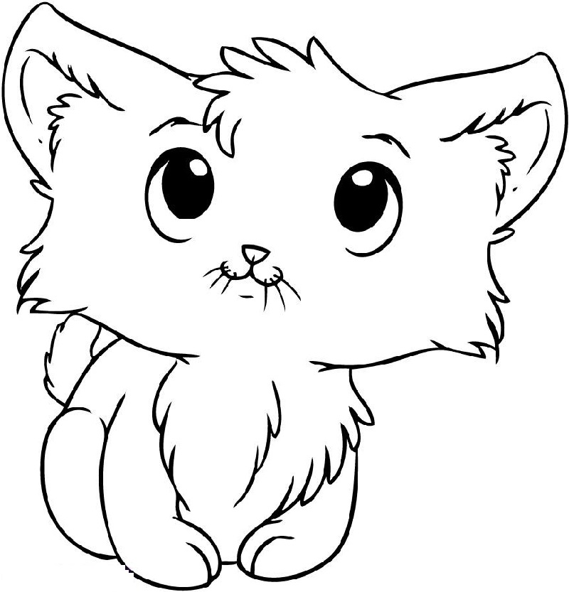 hard cute cat coloring pages kitten coloring pages coloring cat cute pages hard