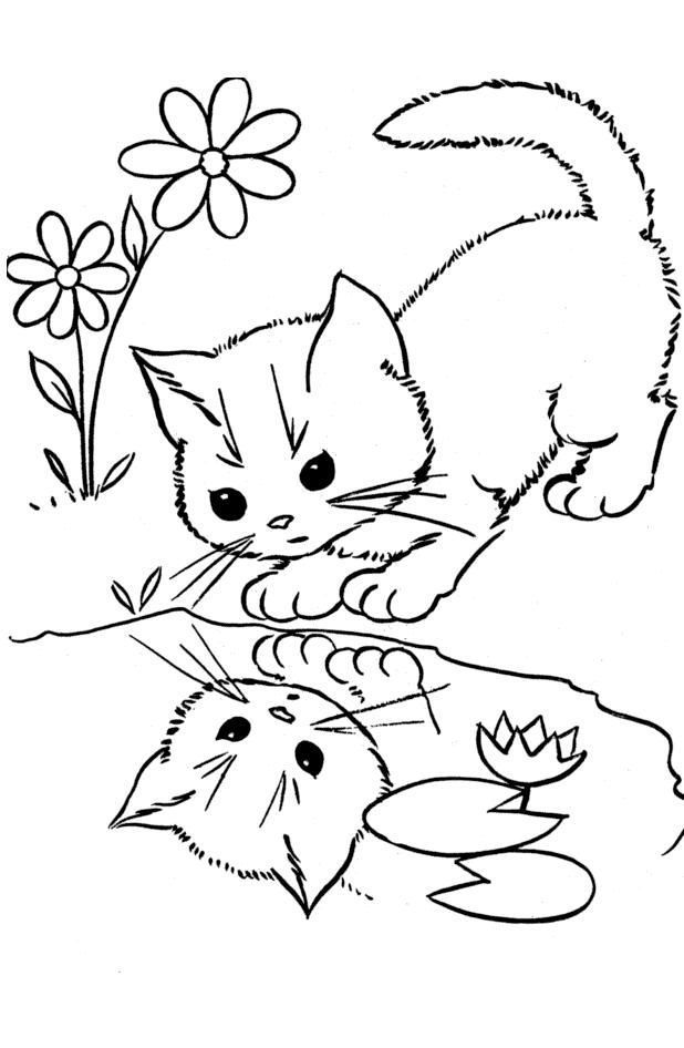 hard cute cat coloring pages realistic tabby cat cat coloring pages coloring cute cat hard pages