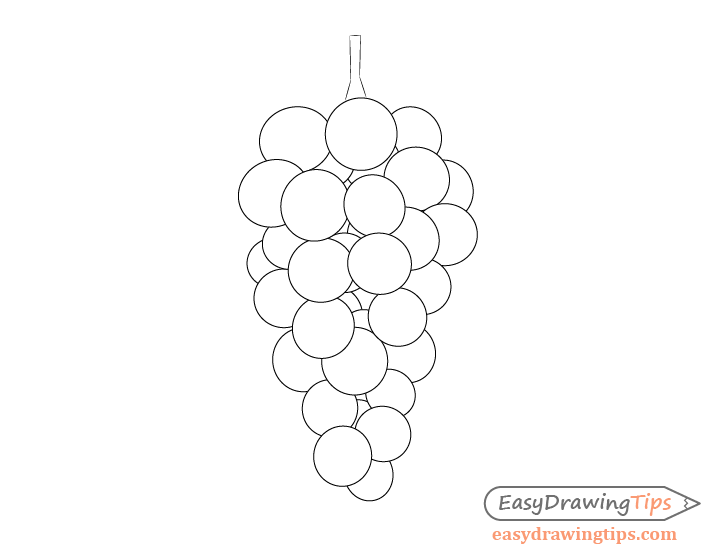how to draw a grape grapes drawing clipart panda free clipart images a to draw grape how