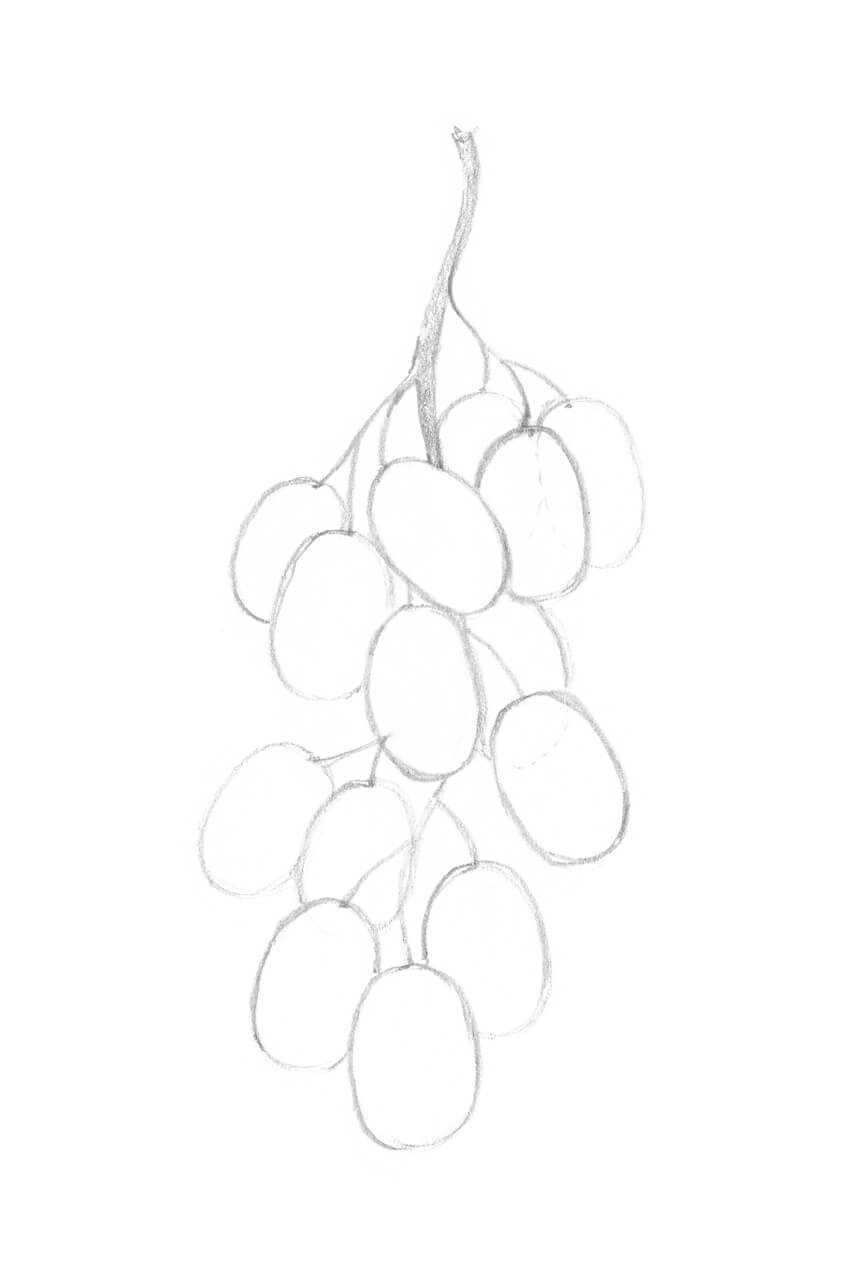 how to draw a grape sketch grapes at paintingvalleycom explore collection grape to a draw how