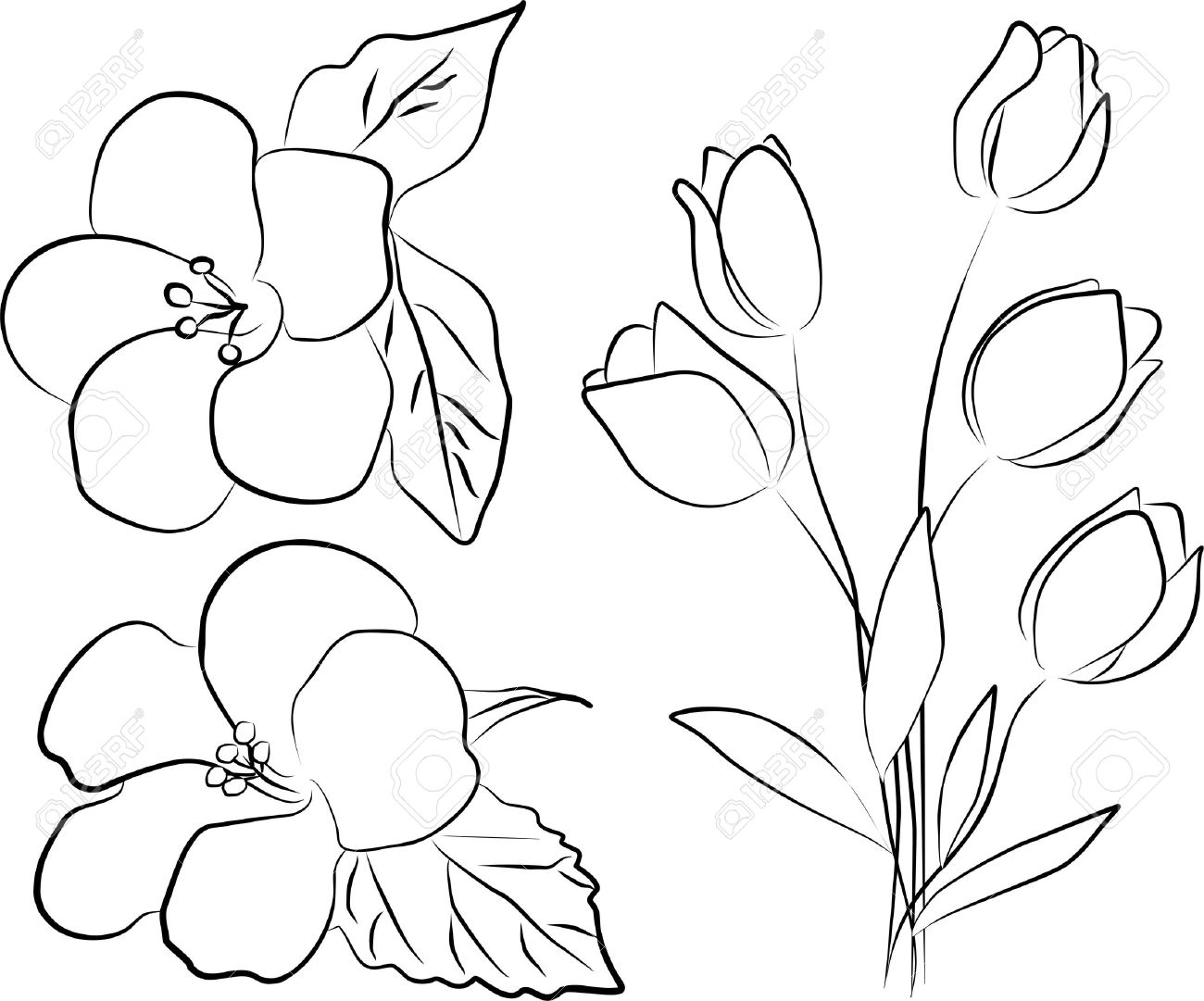 how to draw bouquet of flowers easy roses bouquet drawing draw how of flowers to bouquet
