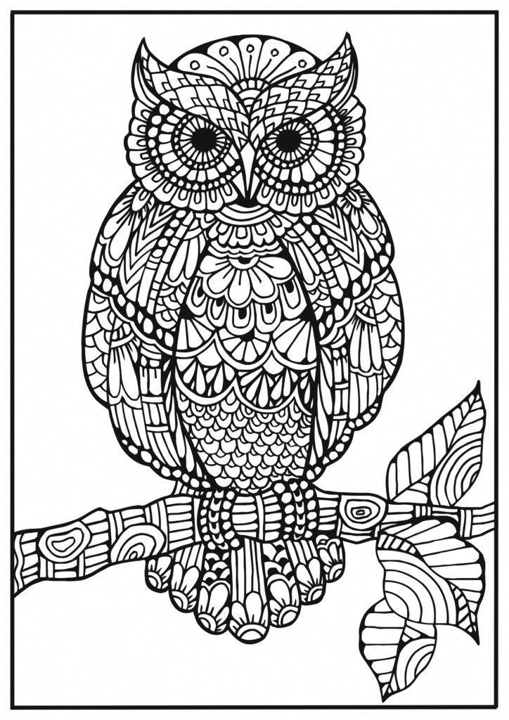 owl print out coloring pages cute owl coloring pages labels coloring pages freebie owl print pages out coloring