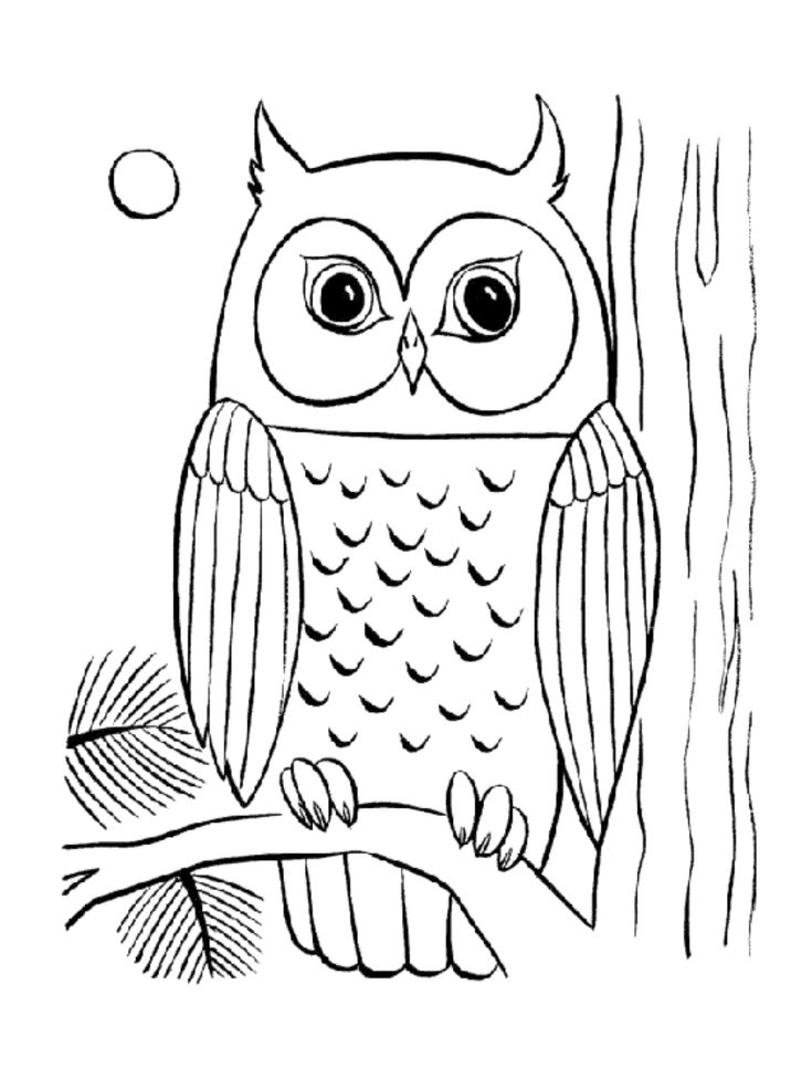 owl print out coloring pages don39t eat the paste owl coloring page out print owl coloring pages
