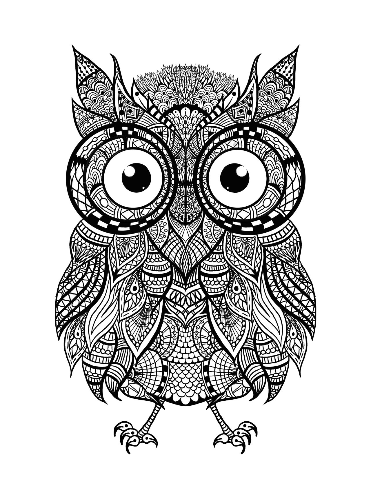 owl print out coloring pages owl coloring pages for kids printable coloring pages 2 owl print coloring out pages