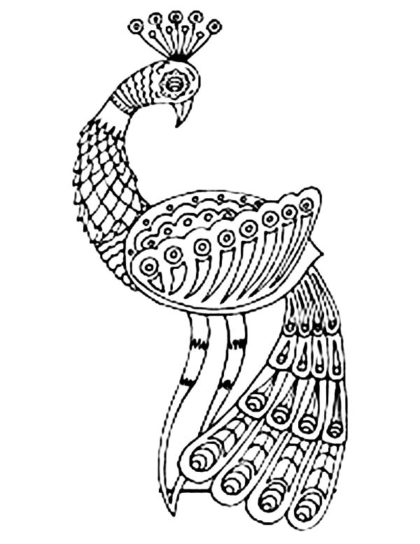peacock pictures to color peacock coloring pages coloring pages to download and print to peacock color pictures