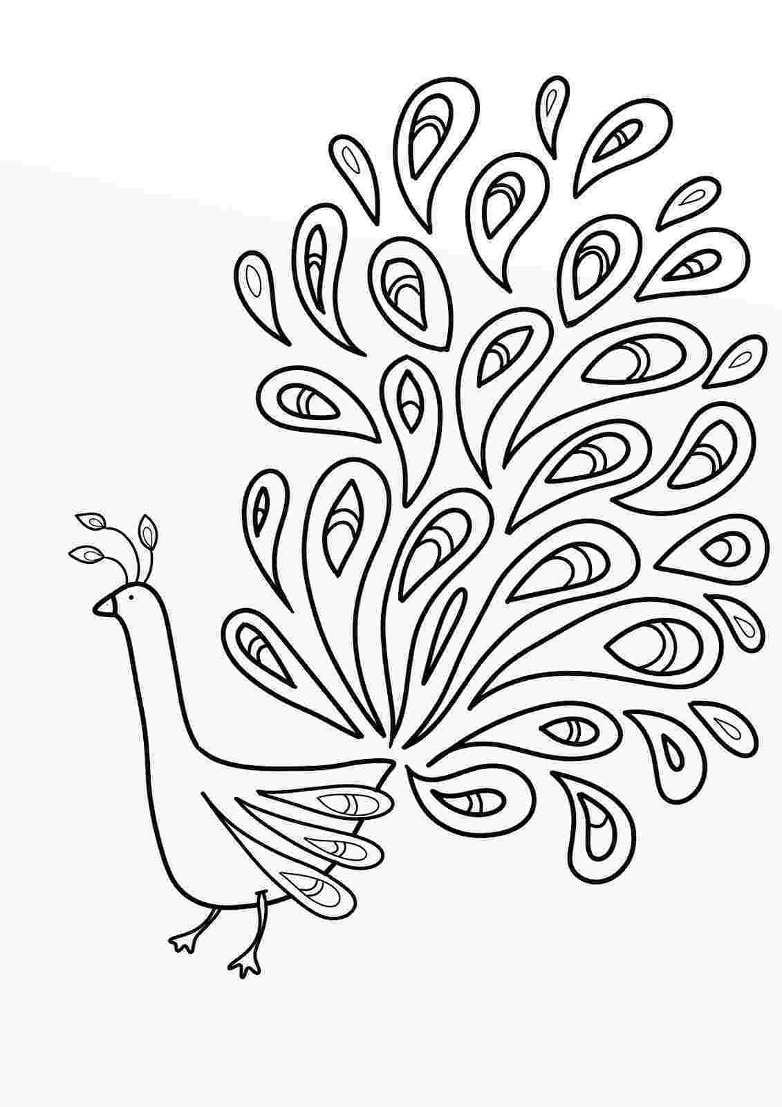 peacock pictures to color peacock coloring pages for kids color to peacock pictures