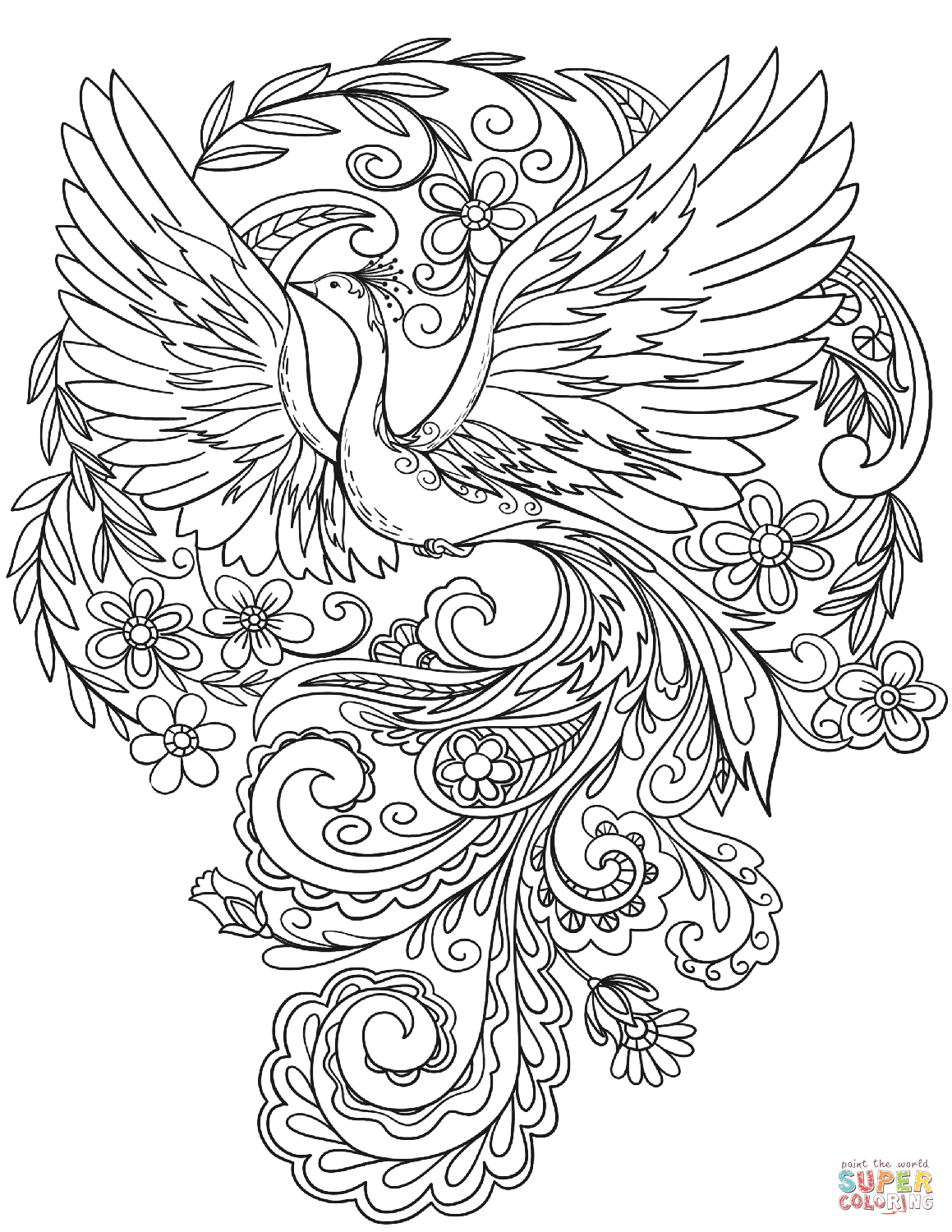 peacock pictures to color peacock coloring pages peacock to color pictures
