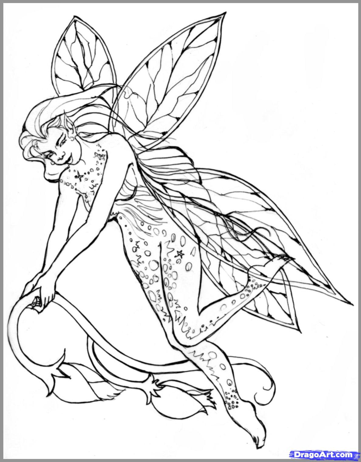 realistic printable fairy coloring pages step by step coloring pages at getcoloringscom free coloring pages realistic printable fairy