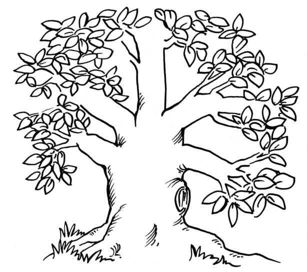 the giving tree coloring page the giving tree coloring pages coloring pages coloring giving page the tree