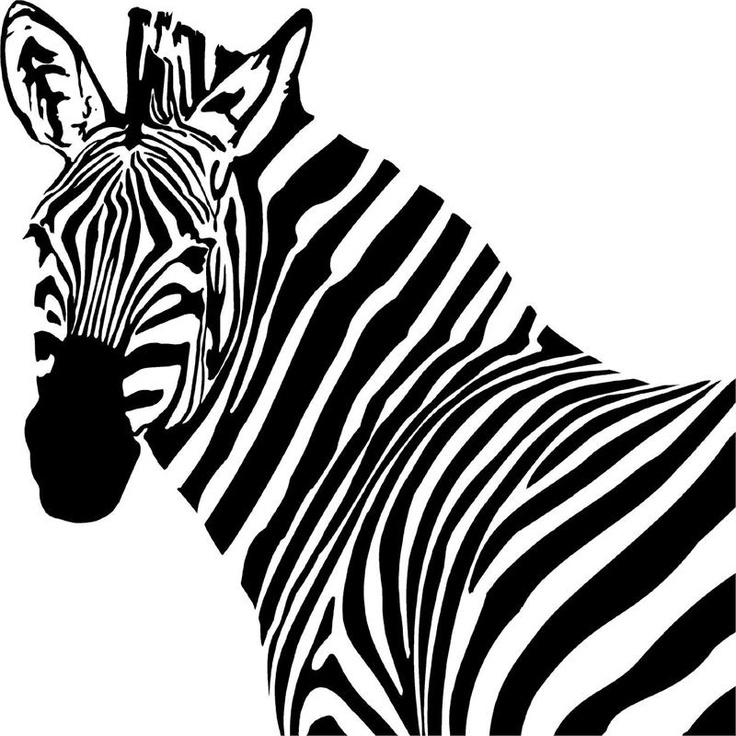 zebra face coloring page zebra clipart black and white free download on clipartmag zebra coloring face page